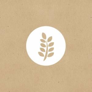 Organic Puffed Amaranth image